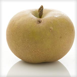 PommeGris apple